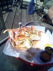Jekyll Island dungeness crab