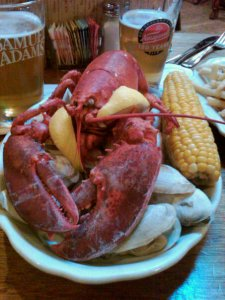 lobster cape cod