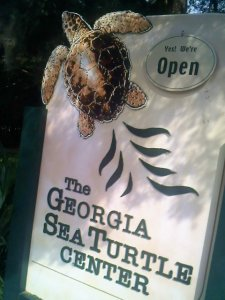 sea tutle center sign